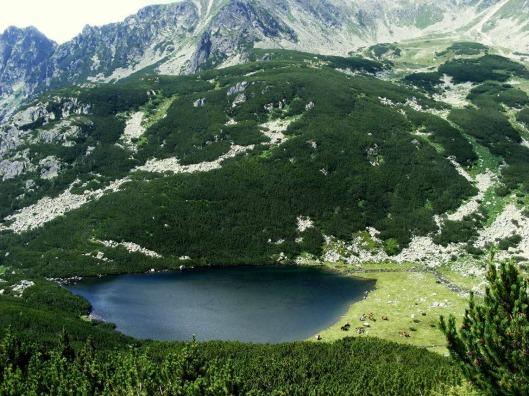 Lacul Lia Retezat